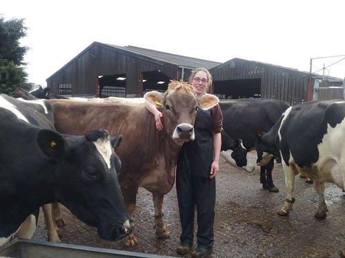 Free Range Dairy   Hobbs