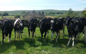 coates_farm2