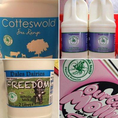 Free Range Dairy | Four labels
